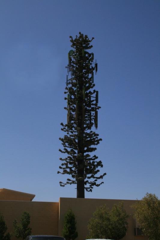 telecommunication monopine tower