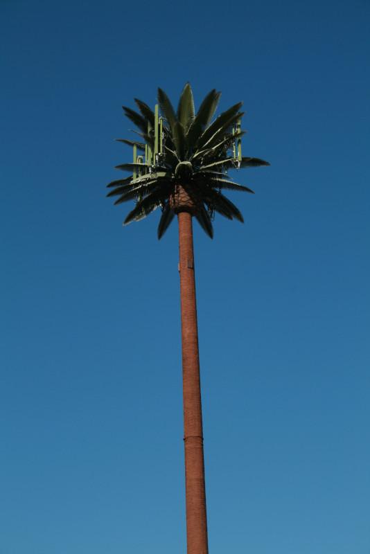 telecommunication monopalm tower